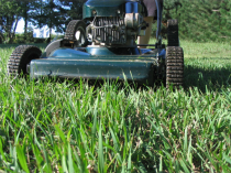 Photo of lawn mower mowing