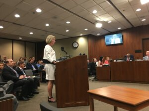Mayor Stothert Addressing Council